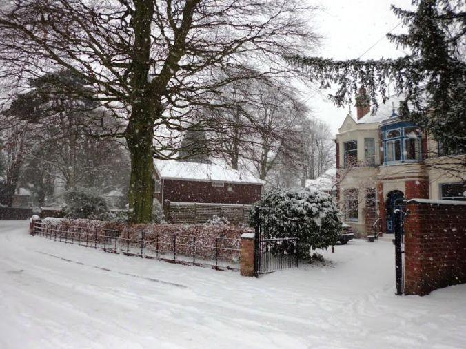 December - Snowy West Avenue